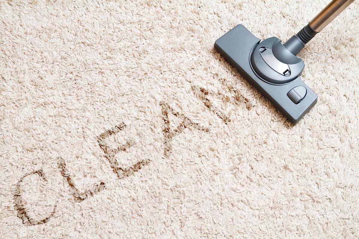 How Do I Maintain My Carpet Auburn Carpet