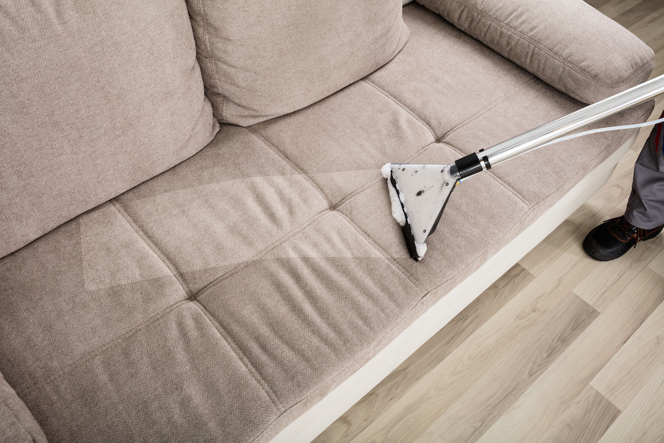 Person Cleaning Sofa With Vacuum Cleaner Auburn Carpet